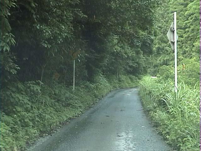 道の活動(1999年07月04日)